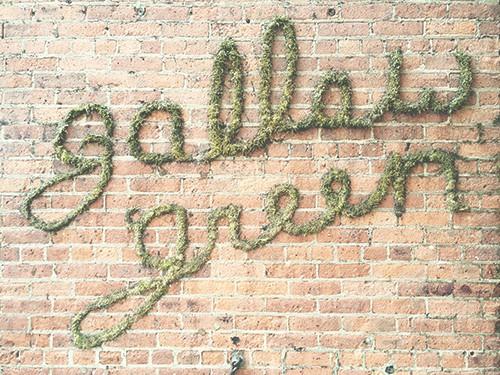 gallow_green_12