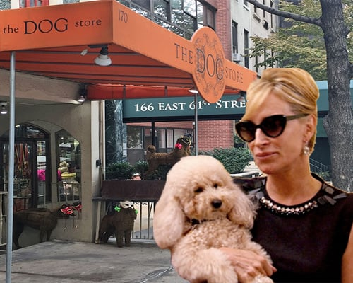 sonja_morgan_dog