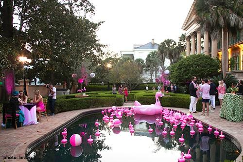 southern_charm_flamingo_01