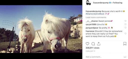 lisa v's ponies