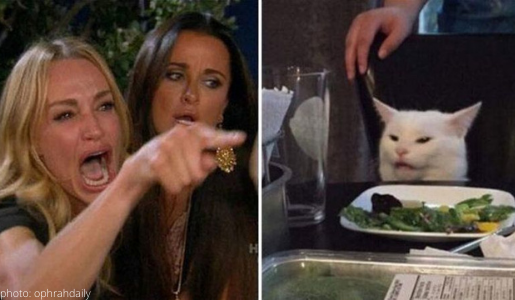 taylor armstrong cat meme kyle richards lady yells at cat rhobh real houswives of beverly hills